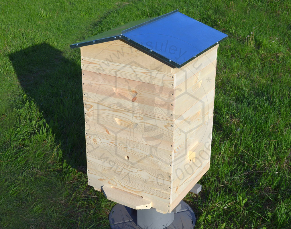 Classical beehives : Dadan 12 frames hive with 2 supers, floor ...